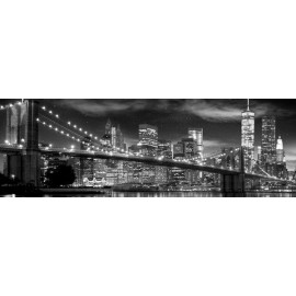 Poster Puerta New York Freedom Tower B& N