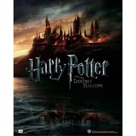 Mini Poster Harry Potter And The Deathly Hollows