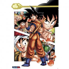 Poster Dragon Ball Goku Story