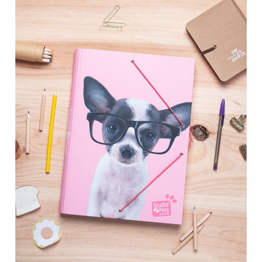 CARPETA SOLAPAS STUDIO PETS DOG GLASSES