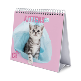CALENDARIO DE ESCRITORIO DELUXE 2021 STUDIO PETS CATS