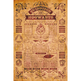 POSTER HARRY POTTER QUIDDITCH AT HOGWARTS
