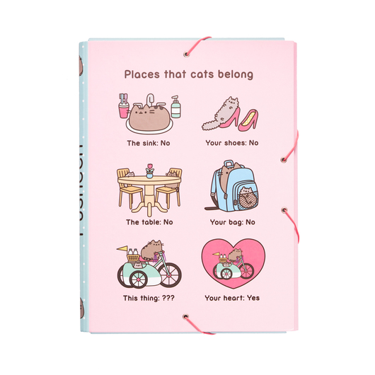 CARPETA SOLAPAS PUSHEEN THE CAT