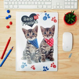 Carpeta Gomas Polipropileno Studio Pets Cat