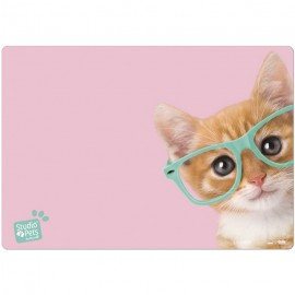 Vade Escolar Studio Pets Cat Camera
