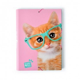 Carpeta Solapas Studio Pets Cat Camera