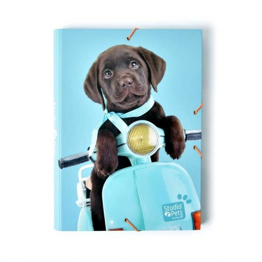 Carpeta Solapas Studio Pets Dog Camera