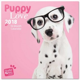 Calendario 2018 30X30 Studio Pets Puppies