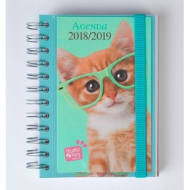 Agenda Escolar DP 2018-19 FR Studio Pets Chat