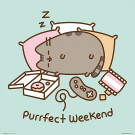 PRINT 30X30 CM PUSHEEN THE CAT PURRFECT WEEKEND