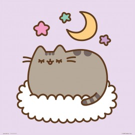 PRINT 30X30 CM PUSHEEN THE CAT DREAMING