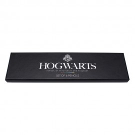 LAPICES SET DE 6 HARRY POTTER HOUSE PRIDE