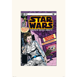 PRINT 45X65 CM STAR WARS 65 GOLRATH NEVER FORGETS