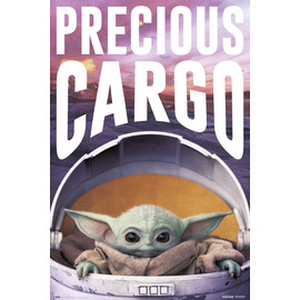 POSTER STAR WARS THE MANDALORIAN PRECIOUS CARGO