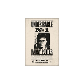 IMAN METAL HARRY POTTER UNDESIRABLE NO1