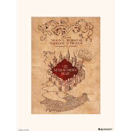 PRINT 30X40 CM HARRY POTTER THE MARAUDERS MAP