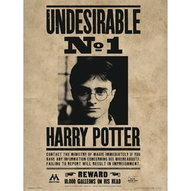 PRINT ENMARCADO 30X40 CM HARRY POTTER UNDESIRABLE N.1