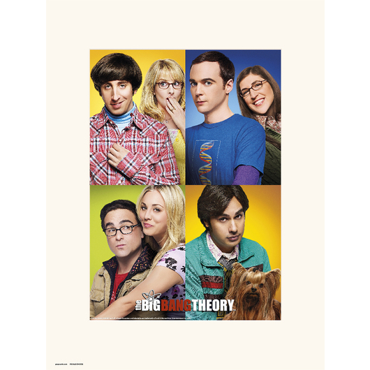 PRINT 30X40 CM THE BIG BANG THEORY MOSAICO