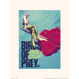 PRINT 30X40CM BIRDS OF PREY BROKEN HEART