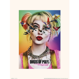 PRINT 30X40CM BIRDS OF PREY DAZED AND CONFUSED