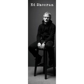 POSTER PUERTA ED SHEERAN BLACK AND WHITE
