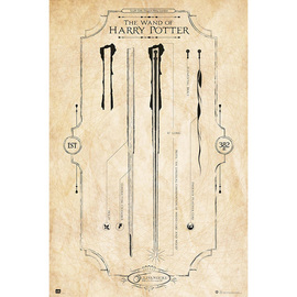 POSTER HARRY POTTER THE WAND