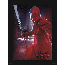 PRINT 30X40 CM STAR WARS VIII ELITE GUARD