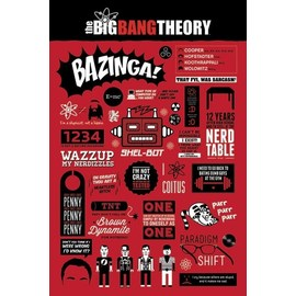 POSTER THE BIG BANG THEORY (INFOGRAPHIC)