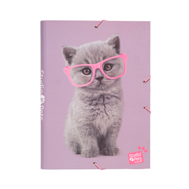 CARPETA SOLAPAS STUDIO PETS CATS 2019