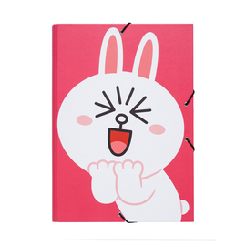 CARPETA CLASIFICADORA LINE FRIENDS