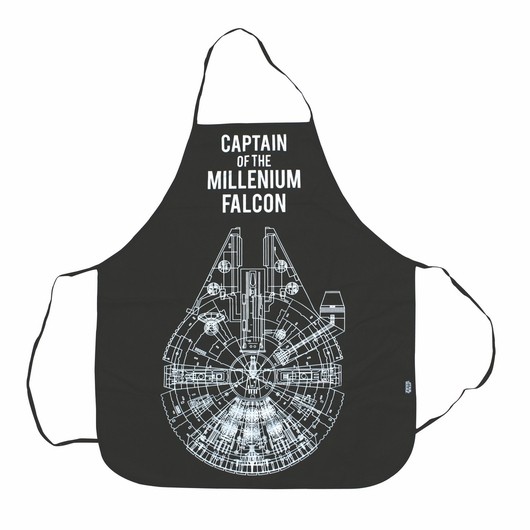 MANDIL STAR WARS CAPTAIN OF THE MILLENIUM FALCON