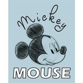 CANVAS 20X25 CM DISNEY MICKEY MOUSE