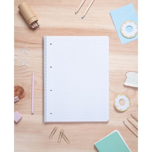 CUADERNO TAPA POLIPROPILENO A4 PAUTADO MICROPERFORADO PUSHEEN ROSE COLLECTION