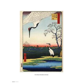 PRINT 30X40 CM TWO RED-CROWNED CRANES