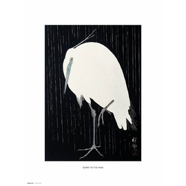 PRINT 30X40 CM EGRET IN THE RAIN