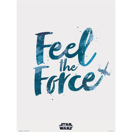 PRINT 30X40 CM STAR WARS EPISODIO IX  FEEL THE FORCE