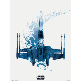 PRINT 30X40 CM STAR WARS EPISODIO IX X-WING