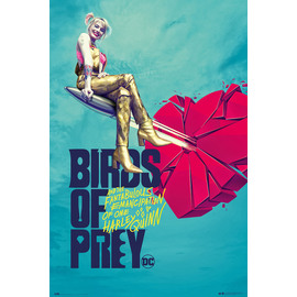 POSTER BIRDS OF PREY BROKEN HEART