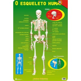 Educational Poster Portugal El Esqueleto