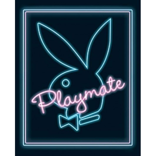 Mini Poster Playmate -Neon-