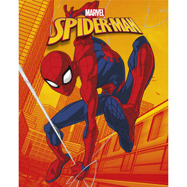 CANVAS 20X25 CM MARVEL SPIDER-MAN